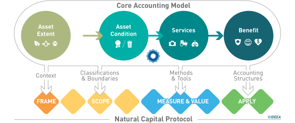 NCP diagram
